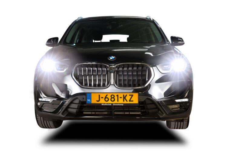 BMW_Mammal_Inc_7861